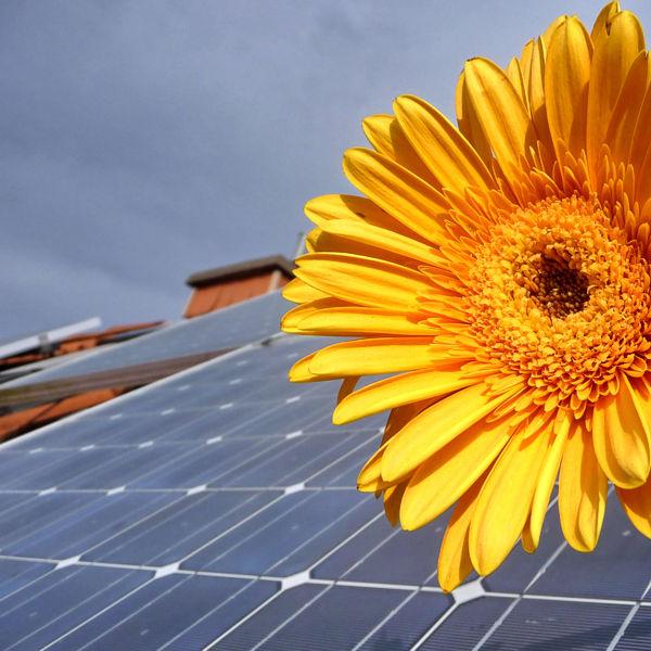 Wir installieren Ihre Solar- oder Solarthermieanlage in Rostock.